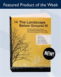 Discover the latest in tree root development in urban soil with The Landscape Below IV