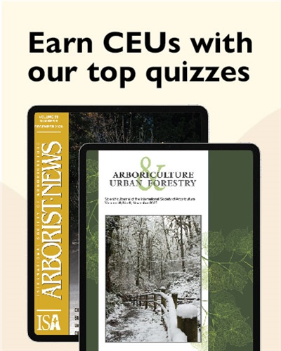 Complementary CEU Quizzes in Our Serial Publications from 2018 and 2019