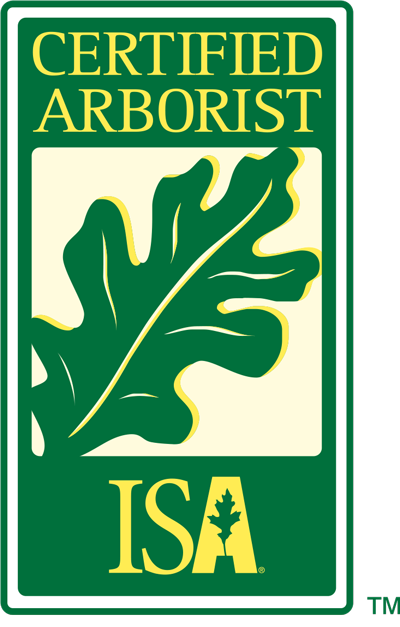 Image result for certified arborist