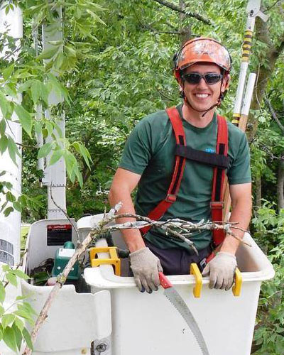 International Society Of Arboriculture Membership Student Programs